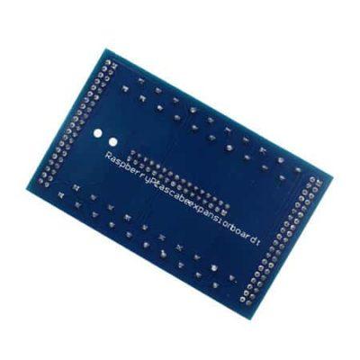 Raspberry Pi Connecteur GPIO arrière